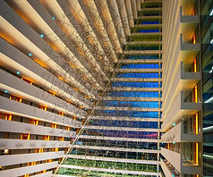 Singapore-Essay4-159_edited.jpg