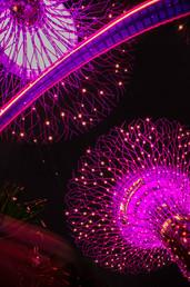 Singapore-Essay4-162_edited.jpg