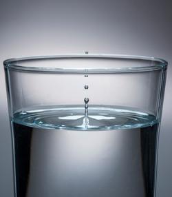 jeffnoblephoto-Bacall_BOOK-002-vertical