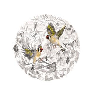 Goldfinch Mandala