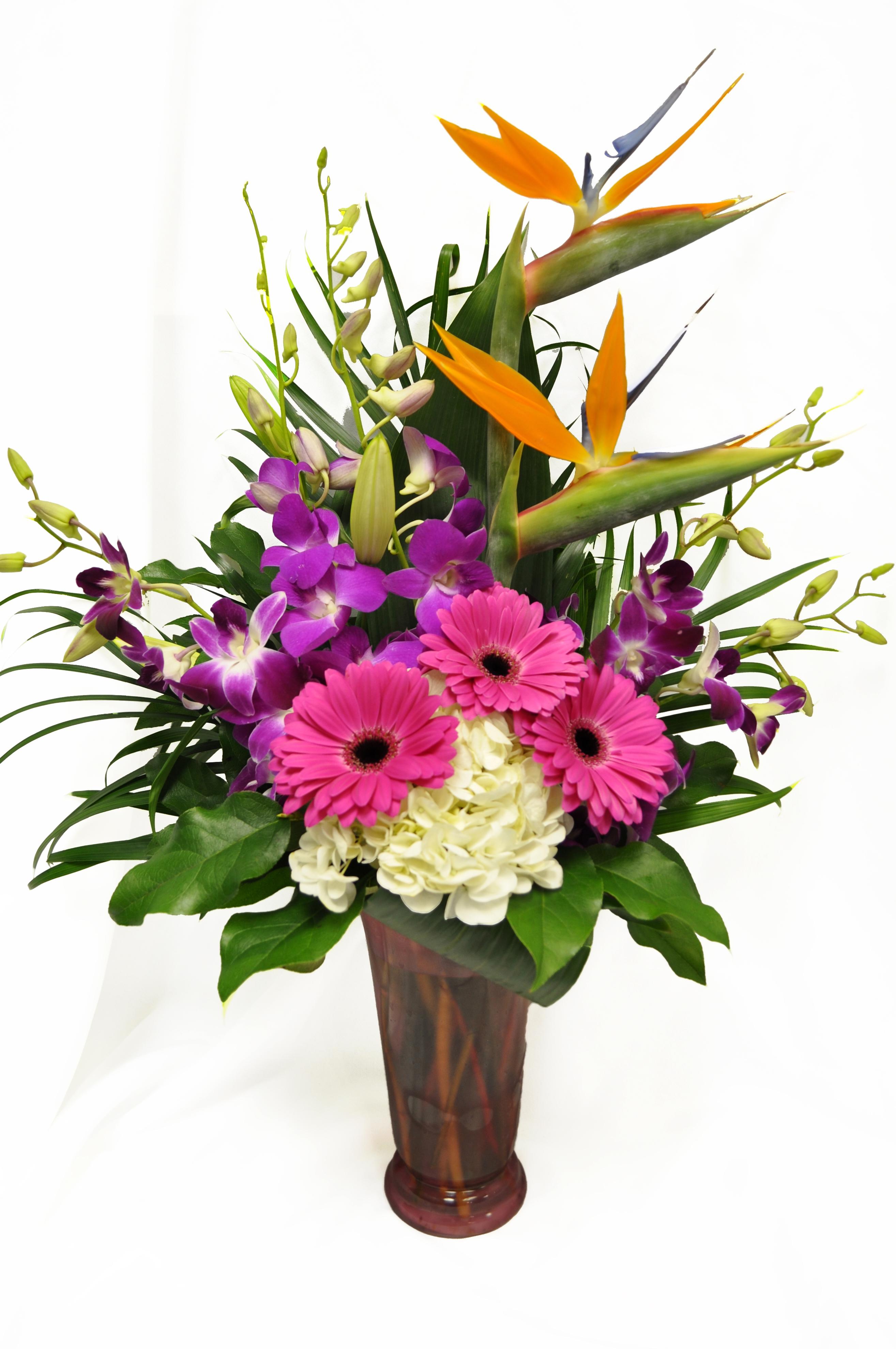 Tropical Orchid Arrangement  .jpg