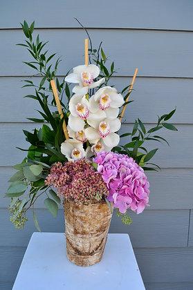 White & Pink Orchid Garden