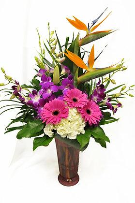 Tropical Orchid Arrangement