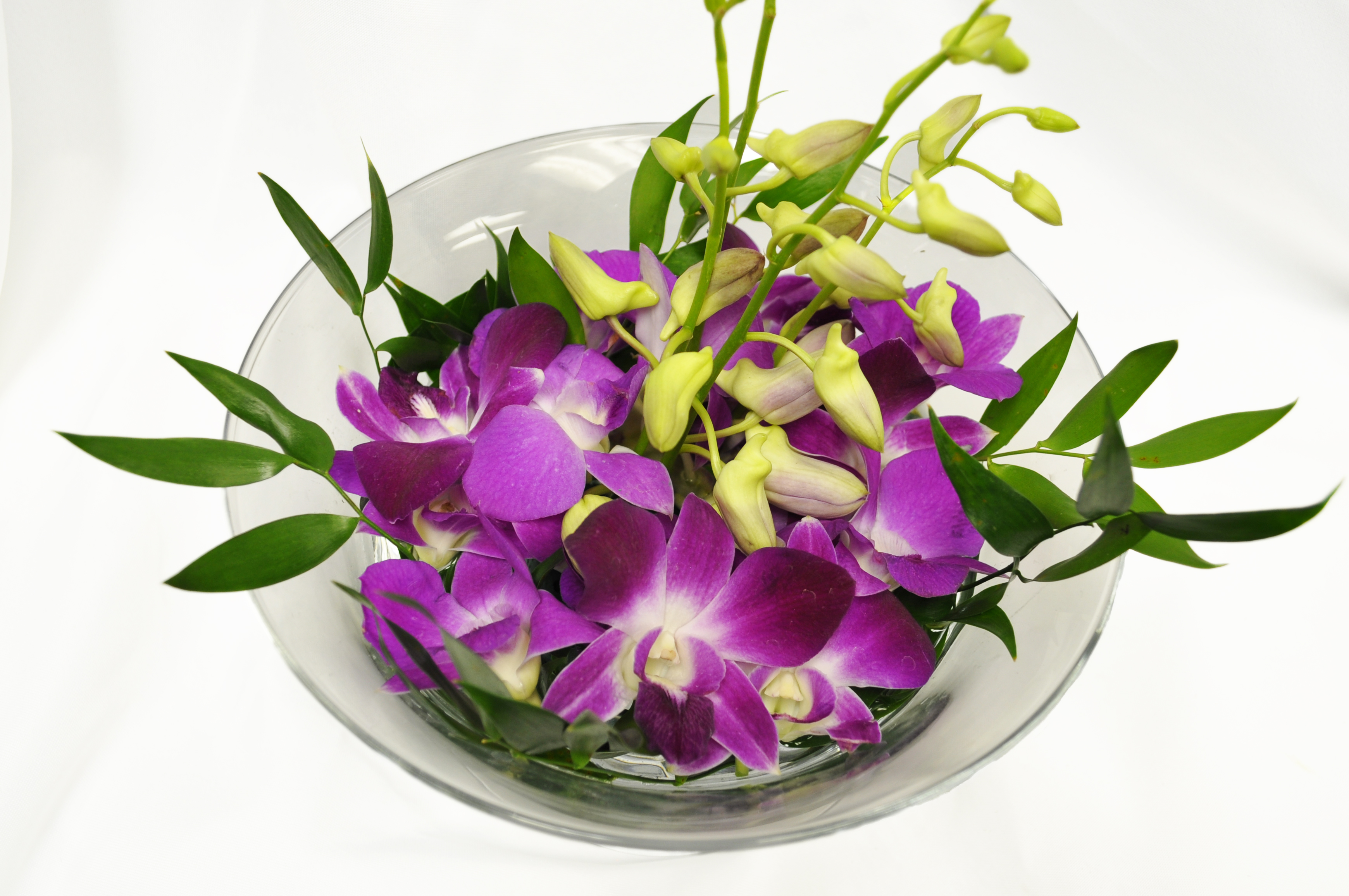Large Orchid Bowl.jpg