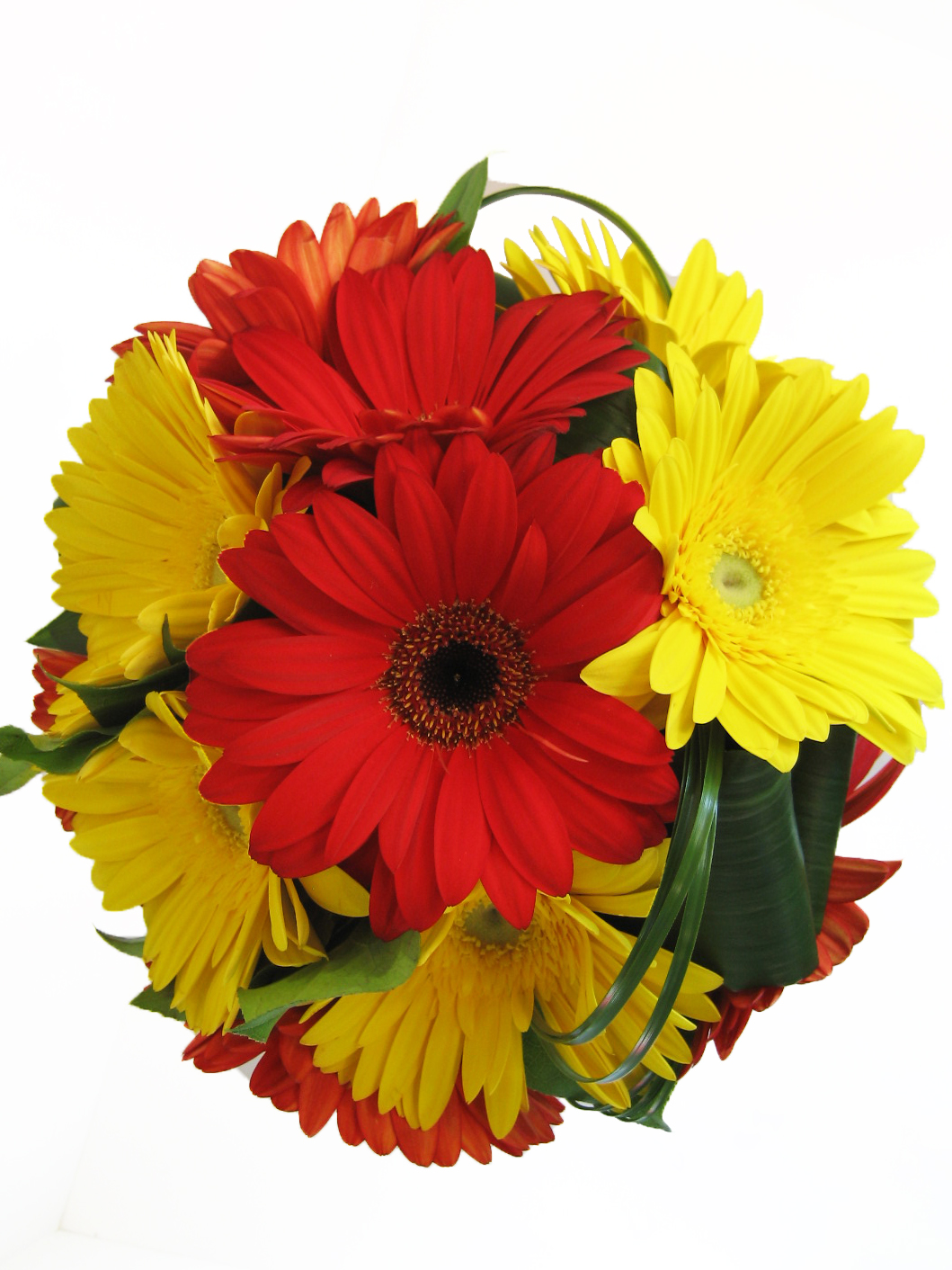 Red and Yellow Gerbera Bouquet