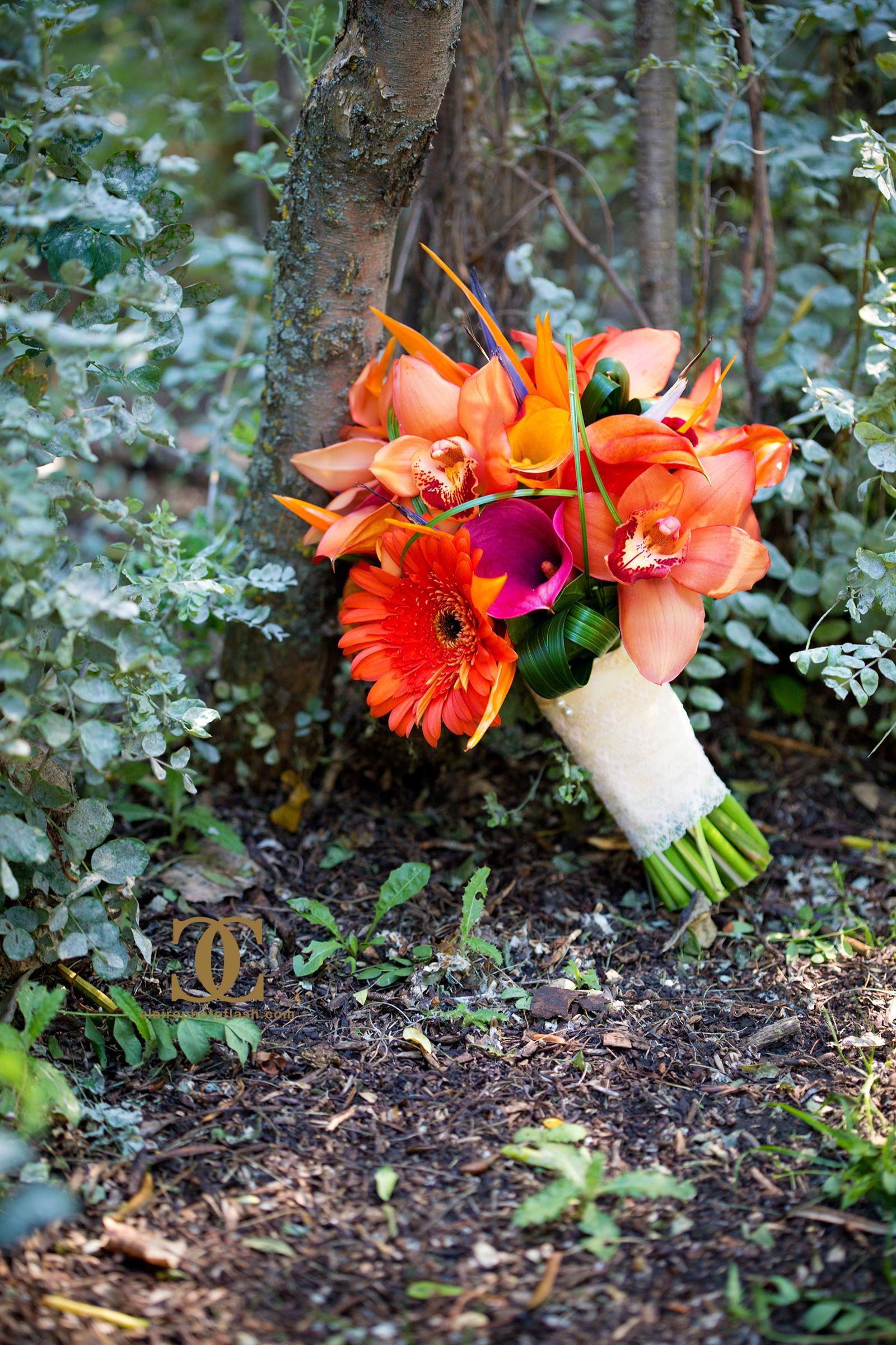 Orange Tropical Wedding 2