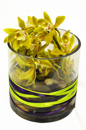 Lime Orchid Bowl