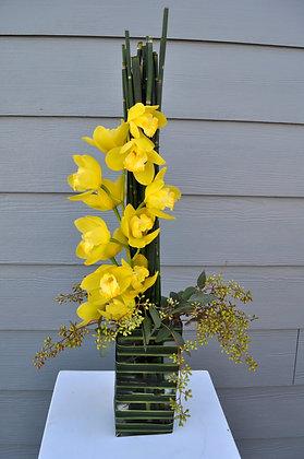 Green Orchid Line Arrangement