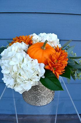 Hydrangea & Pumpkin Arrangement