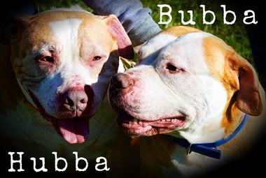 Hubba & Bubba