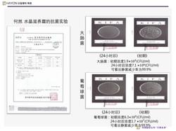韓國化妝品公司HAYON公司及產品介紹.pdf_page_30