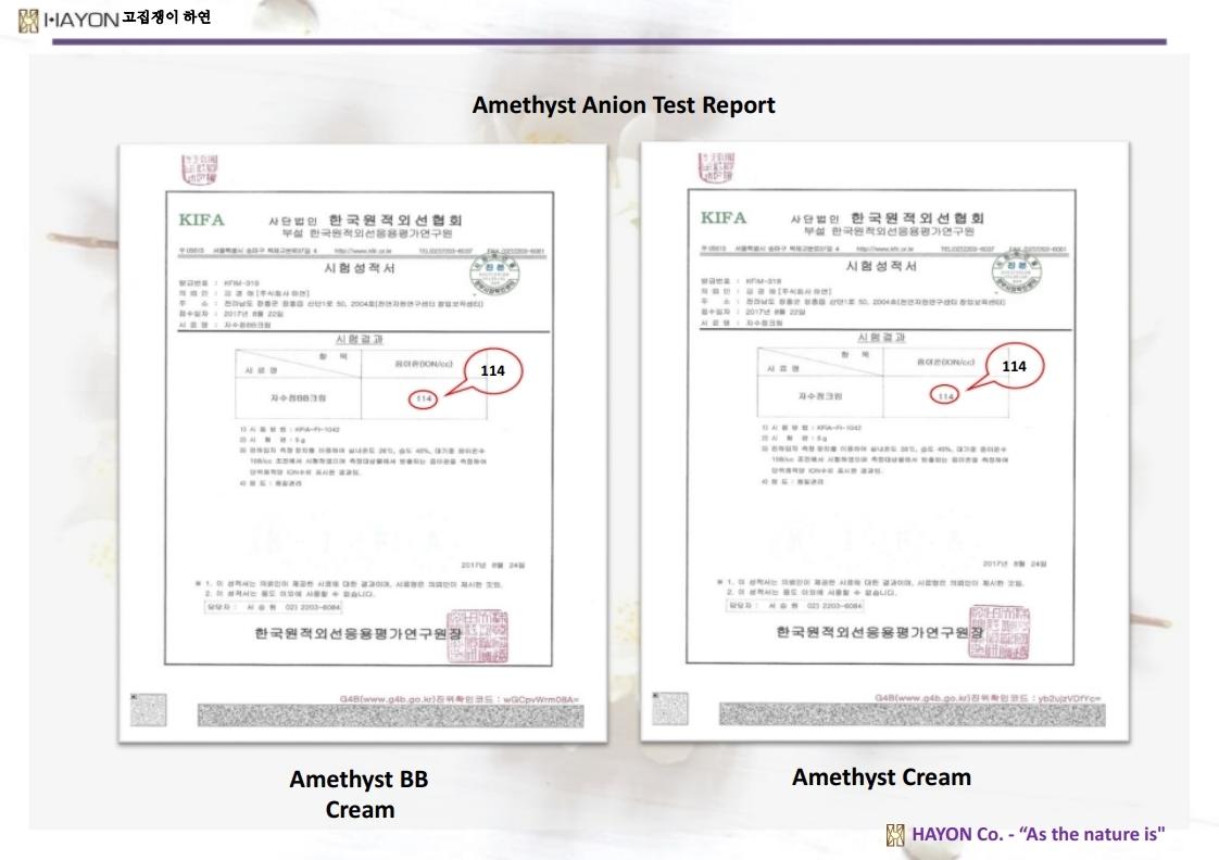 Hayon_PPT.pdf_page_31