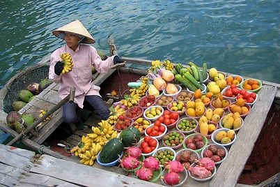 Зимой во Вьетнаме, уехать на зиму Вьетнам, жить во Вьетнаме