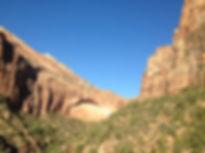 Путешествия по Америке. парк Zion