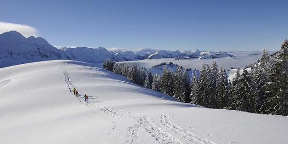 Schneeschuhlaufen zum Tanzboden