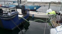 Bjærgning af sejlbåd
