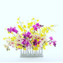花の力_Power of Flower