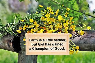 spring-3347189__480.jpg