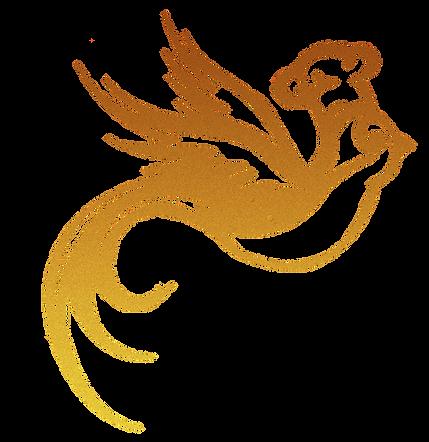 nok_logo_edited.png