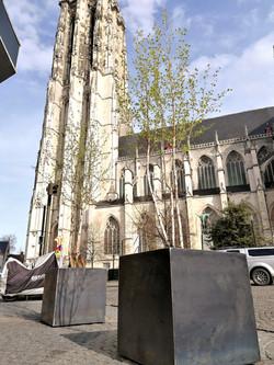Boombakken te Mechelen