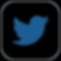 Social_Media_Kanaele_Twitter-120x120.png