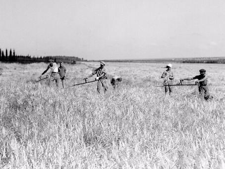 How the Kibbutzim Nourished a Nation Pt.1