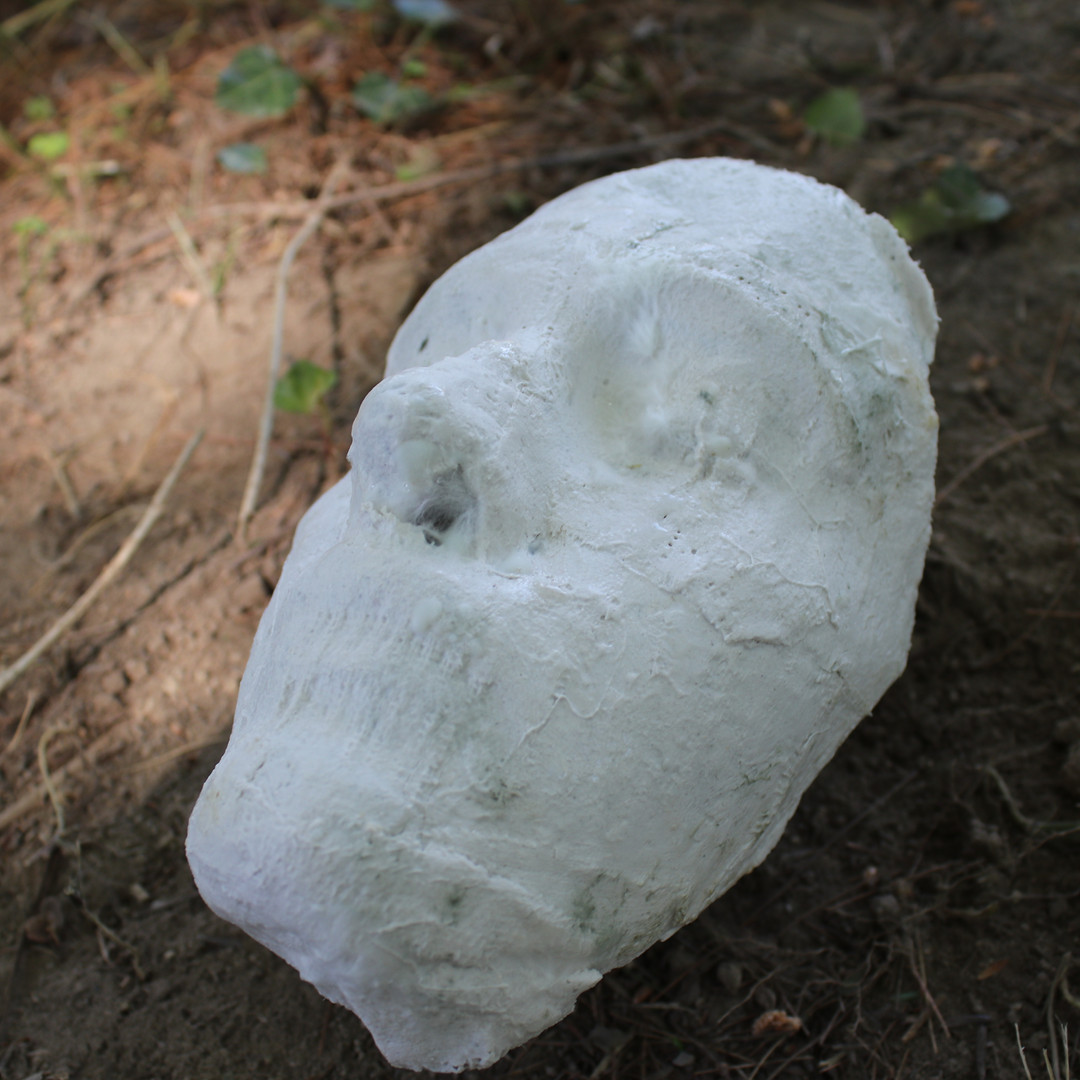 Death and Her Faces (3), 2020, plaster, mycelium, mold, growing medium, wax