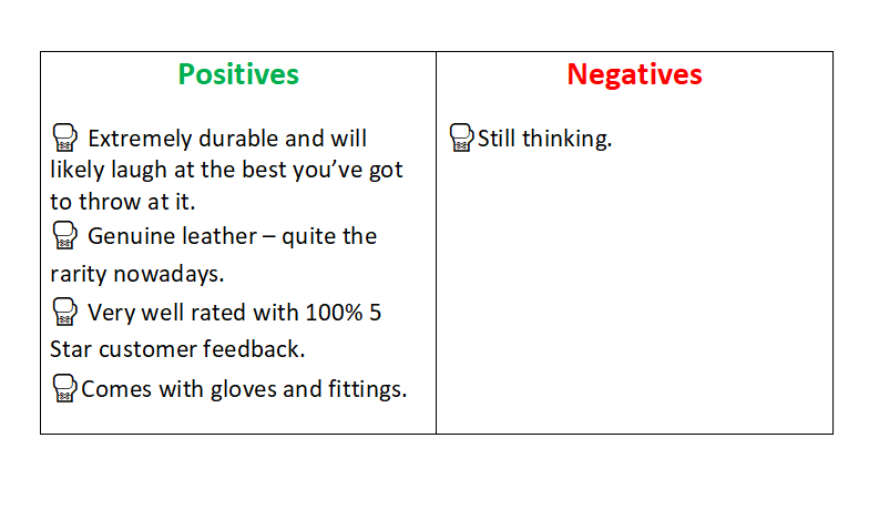 a text box identifying the positives and negative of the TurnerMax boxing bag.
