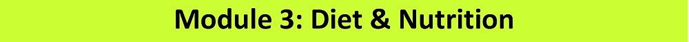 this banner says: the definitive weight-loss programme Module 3: Diet & Nutrition