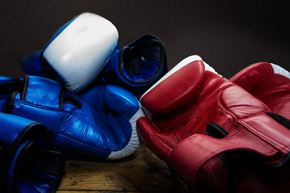 A number of pairs of 10 oz boxing gloves. This image is part of an article that reviews the best 10 oz boxing gloves on the market.