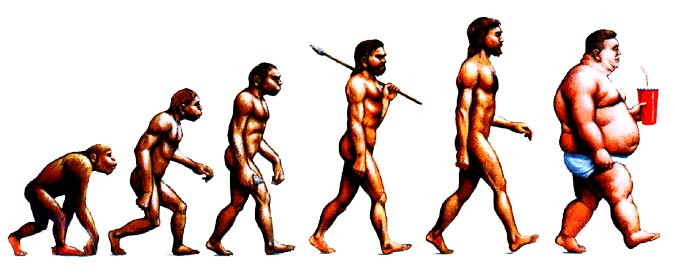 the evolution of man from ape to homo sapiens