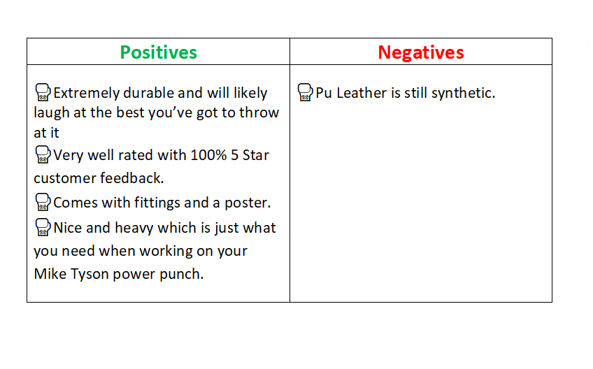 a text box identifying the positives and negative of the Sportstech boxing bag.