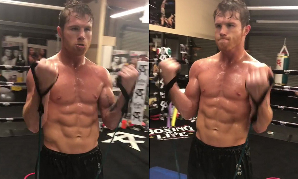 """An image of Santos Saúl """"Canelo"""" Álvarez Barragán is a Mexican professional boxer. He has won multiple world championships in four weight classes from light middleweight to light heavyweight, including unified titles in three of those weight classes."""