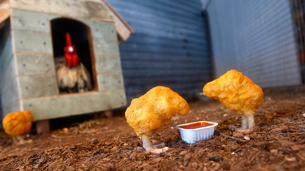 an image showing chickens as chicken nuggets