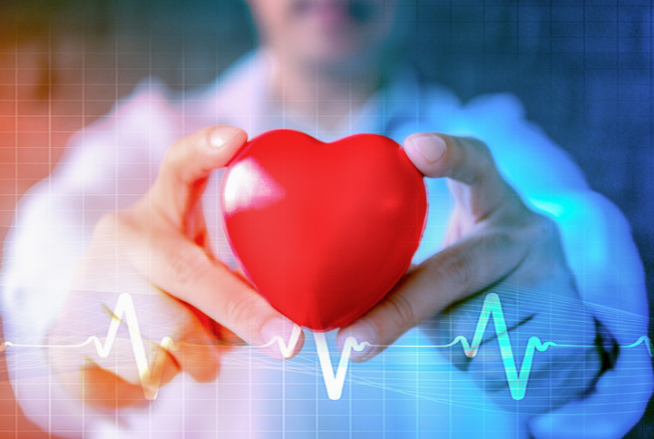 an image of a doctor holding a model heart. This is supposed to represent the importance of health testing as part of the hungry4fitness weight-loss programme.