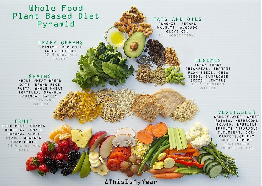 a plant based diet food pyramid