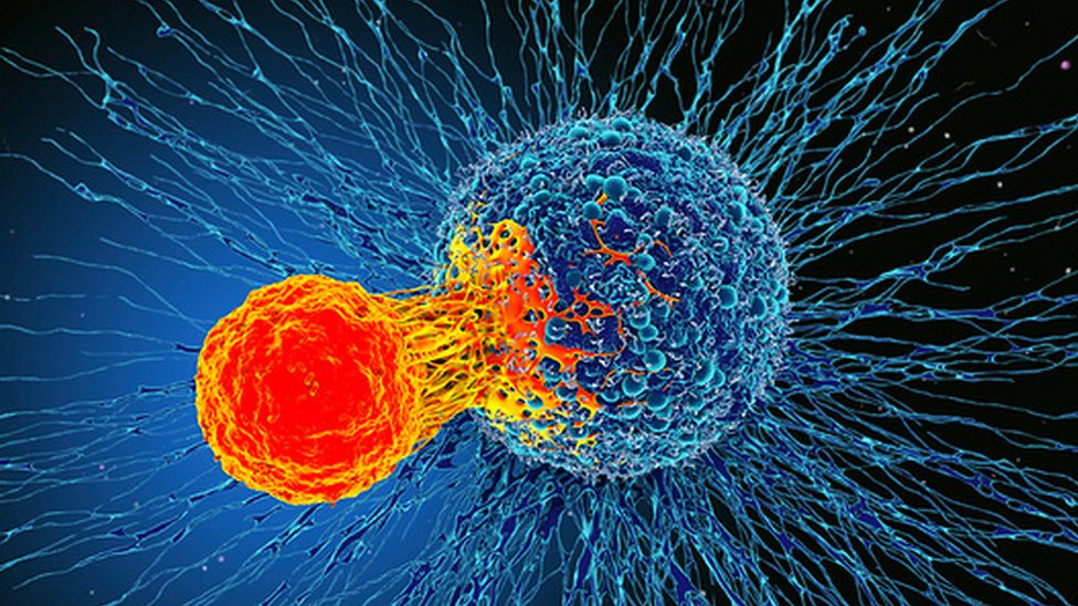 an image showing a metastasising cancer cell