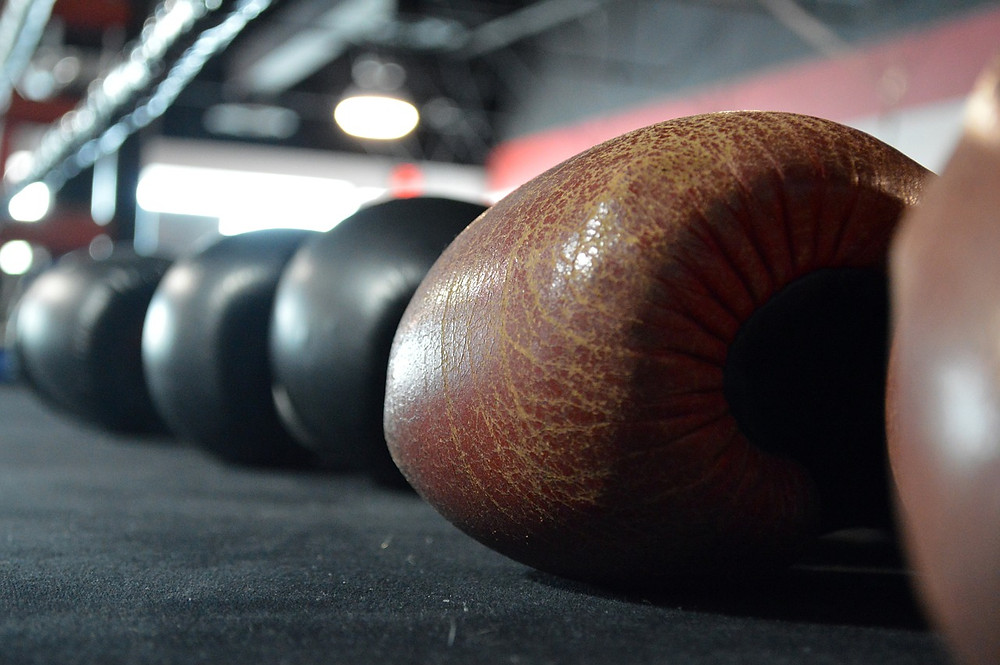 A row of leather 10 oz boxing gloves lined up on boxing ring.