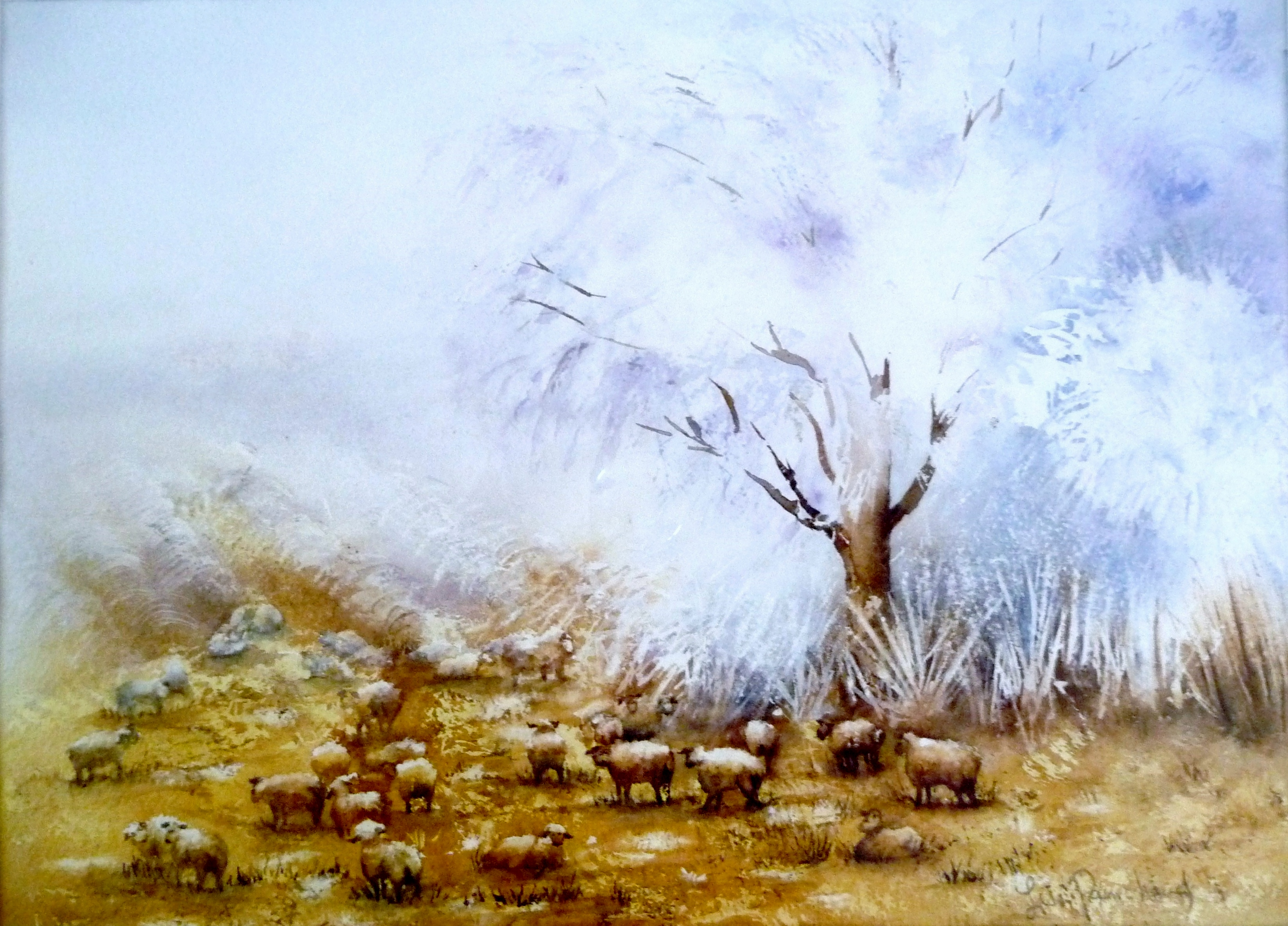 moutons aquarelle 001