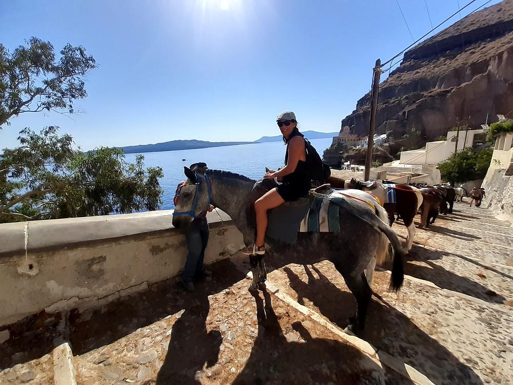 Cosa fare a Santorini: una passeggiata a boro di un asino