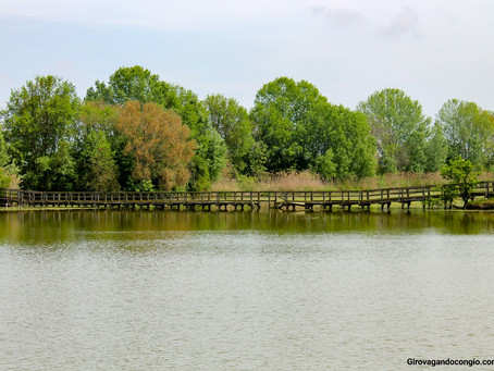 Oasi di Cà di Mezzo, una piacevole gita fuori porta nel Veneto tra natura e storia