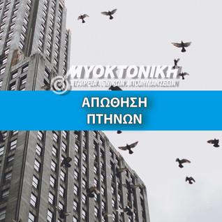 Website - Apothisi Ptinon.jpg