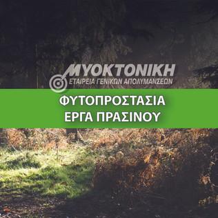 Website - Fitoprostasia.jpg