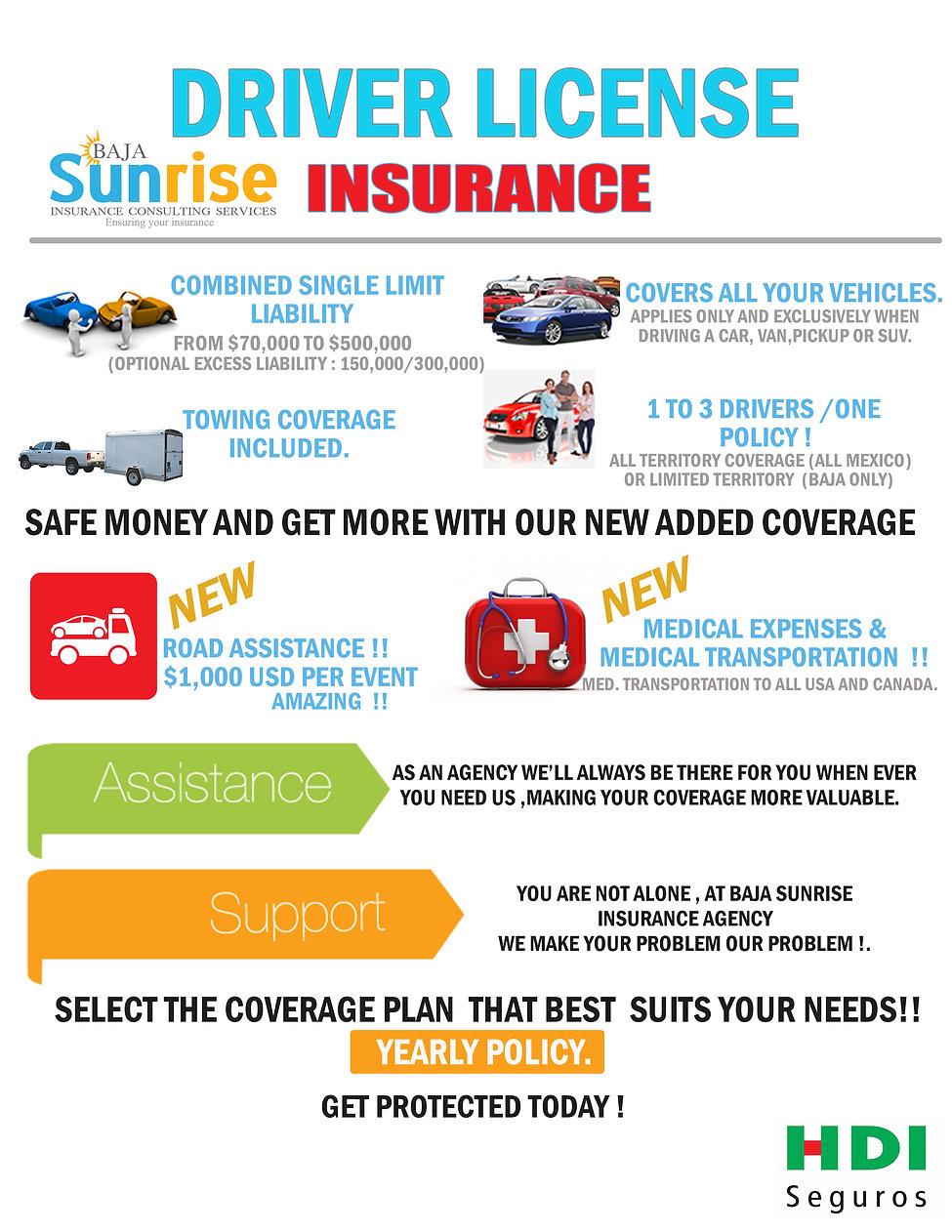 Driver License Insurance