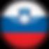 slovenia-flag-3d-round-medium.png