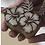 Thumbnail: Hibiscus Wood Block