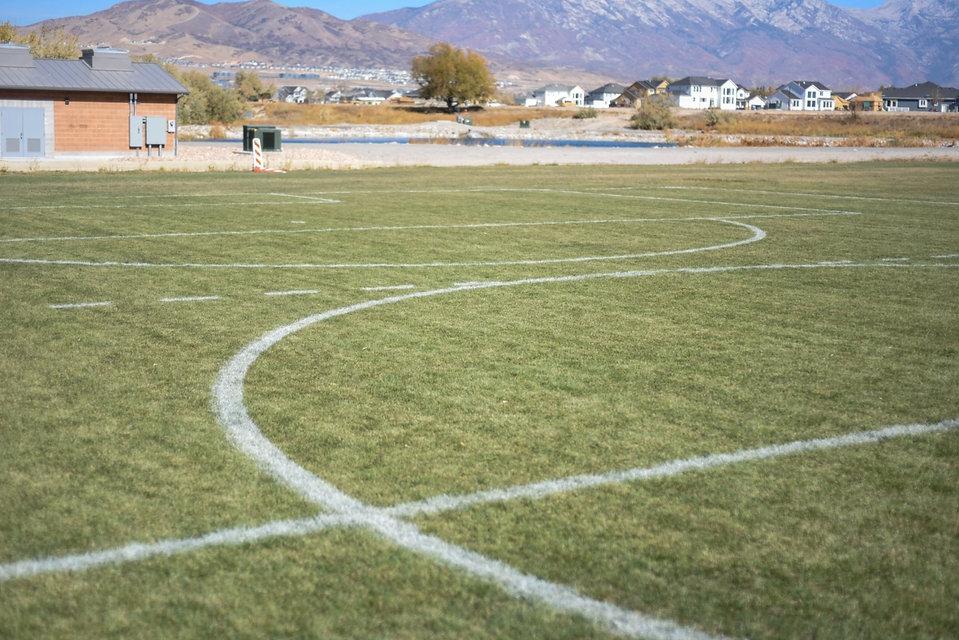 Field Photo.jpeg