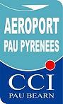 Aéroport Pau Pyrénées, Transport Taxi Pau