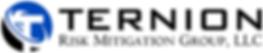 TERNION RICK MITIGATION GROUP, LLC logo