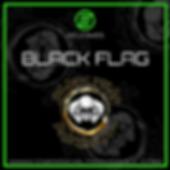 Black Flag Sponsor Banner.png